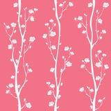 Картина востоковедного цветения сливы безшовная Стоковая Фотография