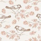 Картина 4 востоковедной вишни Стоковые Изображения RF