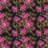 Картина вышивки красочная флористическая безшовная Стоковое фото RF
