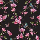 Картина вышивки флористическая безшовная с восточным вишневым цветом Стоковое Фото