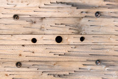 Картина в древесине вьюрка кабеля Стоковое Изображение