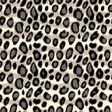 Картина в черно-белом, вектор животной печати кожи леопарда безшовная Стоковые Изображения