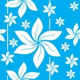 Картина Гаваи для печати Стоковые Фотографии RF