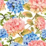 Картина гортензии и жасмина флористическая безшовная Стоковое Изображение