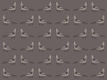 Картина голубей Стоковое Изображение RF