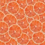 Картина грейпфрута вектора реалистическая отрезанная безшовная Стоковая Фотография