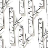 Картина дерева березы Предпосылка черно-белых деревьев безшовная на белизне Стоковые Изображения RF