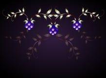 Картина ежевик на фиолетовом основании EPS10 Стоковые Фотографии RF