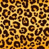 картина леопарда безшовная вектор Стоковая Фотография RF