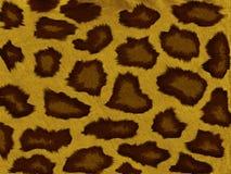 Картина леопарда Стоковые Изображения RF
