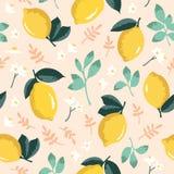 Картина лета вектора с лимонами и цветками Стоковые Фотографии RF