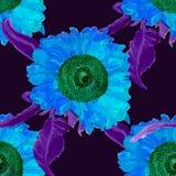 Картина лета солнцецвета акварели безшовная Стоковые Изображения RF