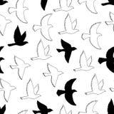 Картина летящих птиц безшовная Стоковое Изображение RF