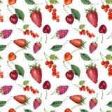 Картина еды акварели ягод и плодоовощей лета безшовная Клубника акварели, вишня, красная смородина, поленика и Стоковое Изображение RF