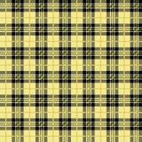 Картина желтой шотландки буйвола безшовная иллюстрация штока