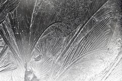 картина заморозка Стоковое Изображение RF