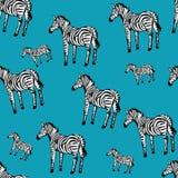 Картина зебры безшовная Стоковые Изображения RF