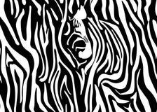 Картина зебры вектора безшовная Черно-белая красивая текстура Совершенно для упаковочной бумаги, постельное белье, ткань бесплатная иллюстрация