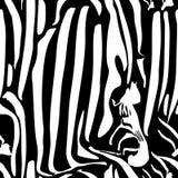 Картина зебры вектора безшовная Черно-белая красивая текстура Совершенно для упаковочной бумаги, постельное белье, ткань иллюстрация вектора
