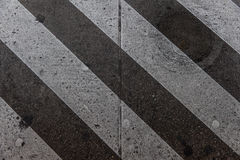 Картина зебры Стоковое фото RF