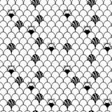 Картина зебры Стоковые Фотографии RF