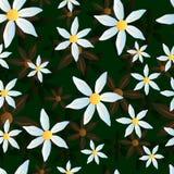 Картина зеленого цвета стоцвета вектора Стоковое Изображение