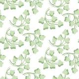 Картина зеленых листьев Стоковое Изображение RF