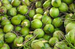 Картина зеленых кокосов Стоковые Фотографии RF