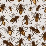 Картина или предпосылка пчелы меда вектора безшовные иллюстрация штока