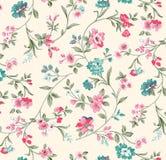 картина иллюстрации цветка в простой предпосылке Стоковые Изображения RF