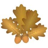 Картина листьев и жолудей дуба бесплатная иллюстрация