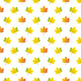 Картина листьев клена осени иллюстрация вектора