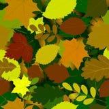 Картина листьев осени безшовная Стоковое Изображение