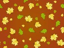картина листьев осени безшовная Стоковое фото RF