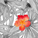 Картина лист ладони акварели безшовная с гибискусом цветет Стоковое фото RF
