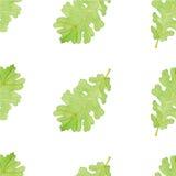 Картина лист дуба акварели безшовная Стоковые Изображения RF