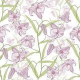 картина лилии безшовная Стоковая Фотография RF
