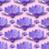 Картина лилии воды Стоковое фото RF