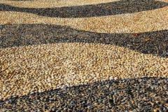 Картина и текстура pebbled дорожки Стоковые Изображения
