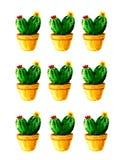 Картина кактуса акварели с цветками на белой предпосылке иллюстрация штока