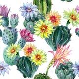 Картина кактуса акварели безшовная Стоковая Фотография