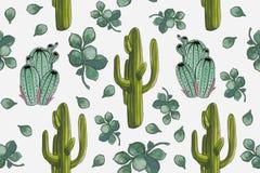 Картина кактусов ` пустыни акварели установленная с ` Crassula бесплатная иллюстрация