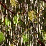 Картина камуфлирования безшовная с реалистическими листьями иллюстрация штока