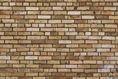 картина кирпича близкая вверх по стене Стоковое Изображение RF