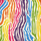 Картина кожи зебры Стоковое Фото