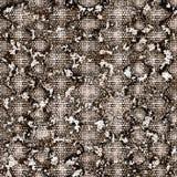 Картина кожи змейки безшовная   Мода стильная стоковая фотография