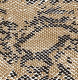 Картина кожи коричневого цвета змейки безшовная Текстура гада безшовная r Современная бесконечная текстура для ткани, платья, стоковые изображения rf