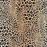 Картина кожи леопарда Текстура вектора безшовная Животная печать, ягуар, гепард иллюстрация вектора