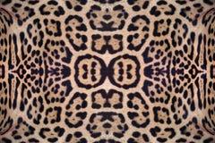 Картина кожи ягуара Стоковое Изображение RF