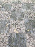 Картина конспекта paver сада Стоковая Фотография RF